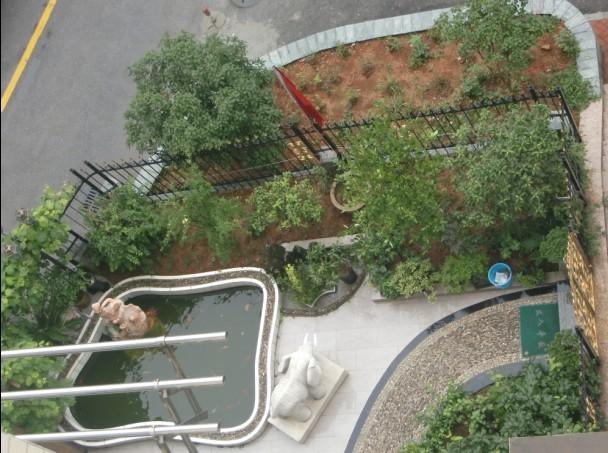 南昌市建设西路莱茵半岛花园二手房出售